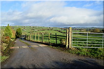 H5956 : Long lane to farm, Keady by Kenneth  Allen