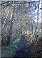 SJ1366 : Footpath to Penycloddiau by Eirian Evans