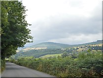 S8959 : The Wexford, Carlow borderlands by N Chadwick