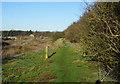 SE2128 : Kirklees Way towards Sunnybank Farm by Ian S