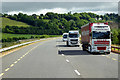 X0879 : HGVs Heading South on the N25 near Youghal by David Dixon