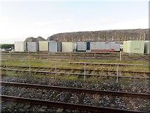 NT9953 : Remnant of old town wall, Berwick on Tweed by Stanley Howe