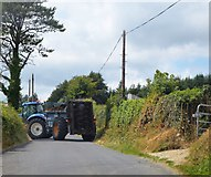 S8755 : Rural traffic jam by N Chadwick