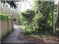 TQ2255 : Public bridleway in Tadworth by Malc McDonald