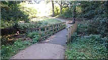 TQ5940 : Bridge over Stream by John P Reeves