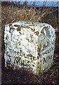 NY9390 : Old Milestone by the A696, south of Liberty Hill, Elsdon parish by IA Davison