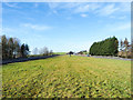 NZ0263 : Tapering grass of central reservation on A69 by Trevor Littlewood