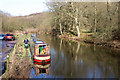 SJ9949 : The canalised River Churnet by Chris Allen