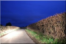 SO8564 : Haye Lane, Ombersley by David Howard