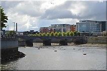 R5757 : R445 Bridge across River Shannon by N Chadwick