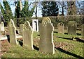 TG2008 : Gravestones in the Jewish Burial Ground by Evelyn Simak