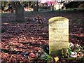 TG2109 : Memorial to children buried in unmarked graves by Evelyn Simak