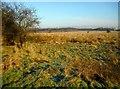 NS6270 : High Moss by Richard Sutcliffe