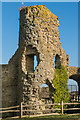 TQ6404 : Pevensey Castle by Ian Capper