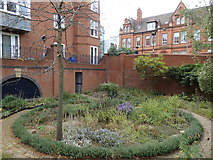 SP0586 : Residential garden by the Birmingham Canal, Birmingham by Rudi Winter