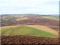 SE5591 : Looking down on Pepper Hill by Gordon Hatton