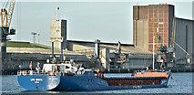 "J3576 : The ""Liva Greta"", Belfast harbour (February 2019) by Albert Bridge"