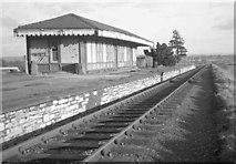 ST6688 : Tytherington Railway Station by Martin Tester