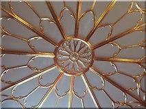 TQ1572 : Ceiling detail, Strawberry Hill House by Ann