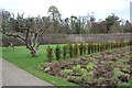 NS2309 : Walled Garden, Culzean Country Park by Billy McCrorie