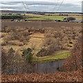 NJ3356 : Pylon line over the River Spey by valenta