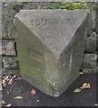 SD7113 : Old Boundary Marker by Milestone Society