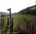 SJ0971 : Offa's Dyke Path Signpost by Eirian Evans