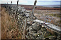 SE1473 : Dry stone wall complete with Fenn Trap by Mick Garratt