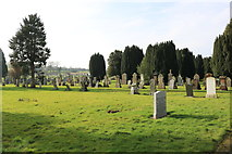 NS5036 : Cemetery, Galston by Billy McCrorie