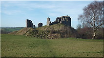 SO2980 : Clun Castle by Fabian Musto