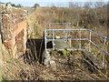 NT0548 : Aqueduct over Anston Burn by M J Richardson