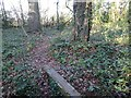 SJ8502 : Footbridge View by Gordon Griffiths