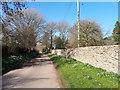 ST9599 : Tarlton village street by Vieve Forward