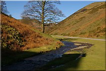 SO4494 : Carding Mill Valley by Ann