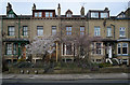 SE1437 : Houses on St. Pauls Road by habiloid