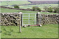 SD9847 : Stone wall with gate dividing fields on SE side of Stockshott Lane by Roger Templeman