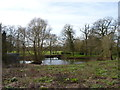 SO9562 : The Mere at Mere Green, Hanbury, Worcestershire (2) by Jeff Gogarty