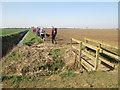 TA0923 : Footbridge  over  drain  on  footpath  to  New  Holland by Martin Dawes