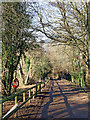 SJ7900 : Estate road between pools in Patshull Park, Staffordshire by Roger  Kidd