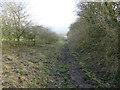SJ8758 : Footpath near The Falls by Stephen Craven