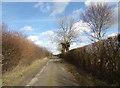TM2769 : Dennington Road, Brundish by Adrian Cable