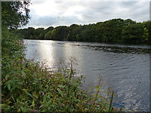 SD4863 : River Lune in Lancaster by Mat Fascione