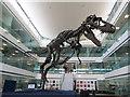 SU4786 : Dinosaur at Diamond by Bill Nicholls