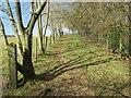 TQ4659 : Public footpath near Knockholt by Malc McDonald