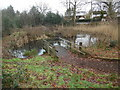 SP8600 : Sheepwash Pond, Prestwood (1) by David Hillas
