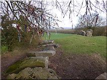 TQ6560 : Coldrum Long Barrow by Marathon
