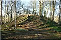 SJ3248 : The Motte at Erddig Motte and Bailey Castle by Jeff Buck