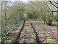 TF0887 : A somewhat impassable Track designated as a Public Byway by Peter Wood