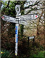 SZ1896 : Godwinscroft Signpost by Nigel Mykura