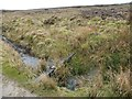NY8200 : Managing the grouse moor, Little Sleddale by Christine Johnstone